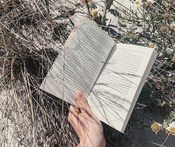 Book with Sand by Alyssa Strohmann (detail)