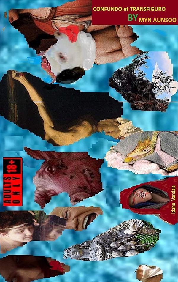Confundo et Tranfiguro (cover)