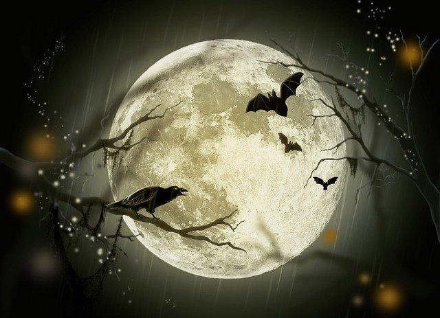Moon and Bats by Larisa Koshkina