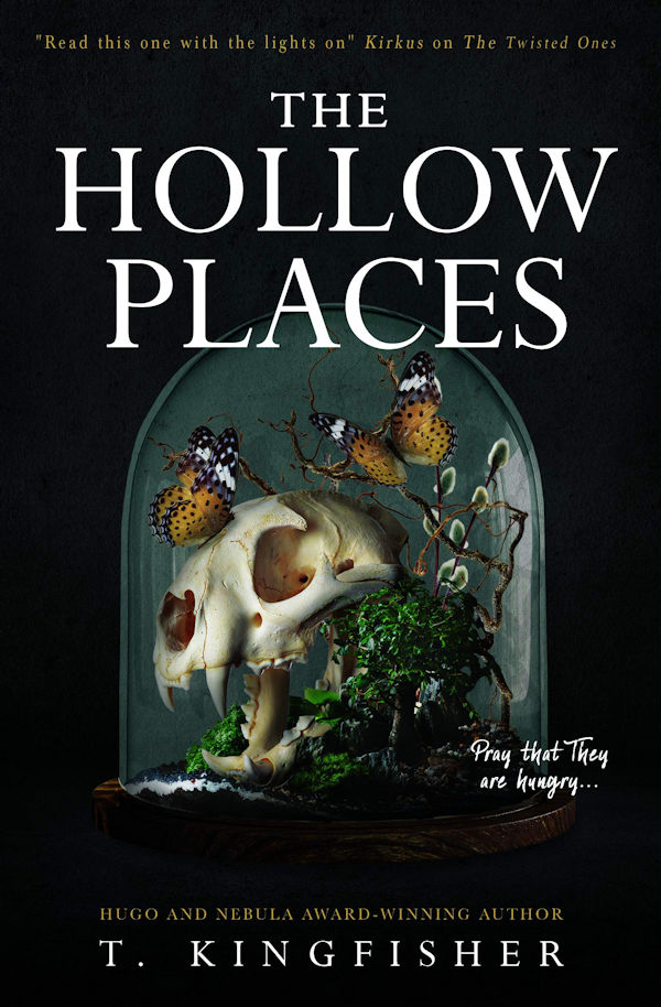 The Hollow Places (cover)